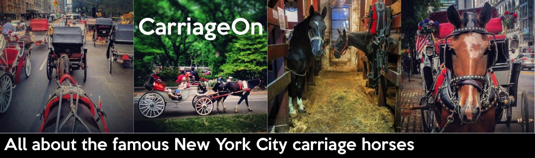 CarriageOn